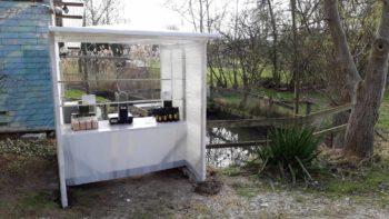Frische Fische direkt am Teich: jeden Samstag 9 - 12